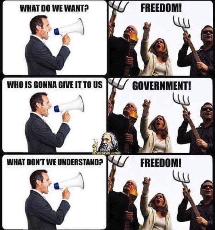 Government and freedom